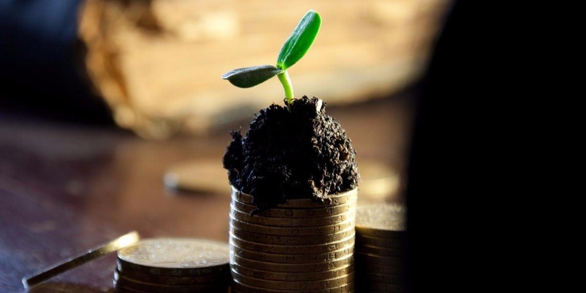 Dividend Investment Portfolio (2017)